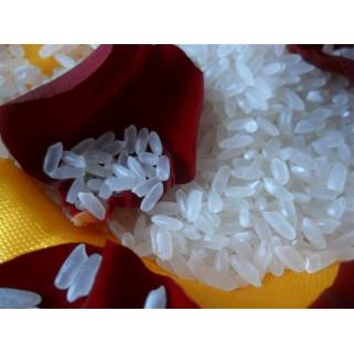 五常大米五常稻花香米1kg零售批发采购东北大米有机宝贝粥米